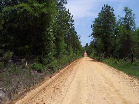 57.69 Acres : Soperton : Treutlen County : Georgia