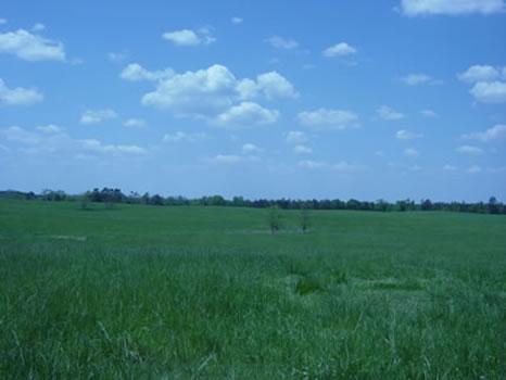 512 Acres : LaGrange : Troup County : Georgia