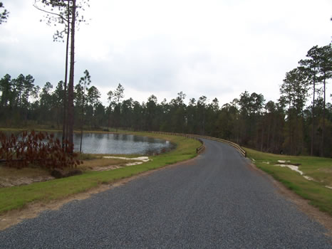 4.99 Acre Lot | Highland Lakes : Eastman : Dodge County : Georgia