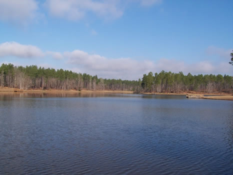 5.06 Acre Lot | Highland Lakes : Eastman : Dodge County : Georgia
