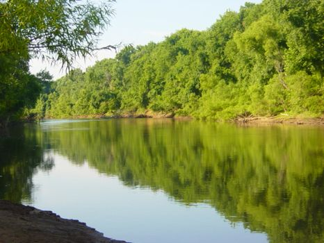 690 +/- Acres on the Flint River : Butler : Taylor County : Georgia